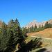 war es unten noch schattig und kalt, war es ab der Bergstation der Palüdbahn schon sonnig und angenehm warm, hinten in der Mitte vom Bild mein Ziel der Fundelkopf (2401 m)