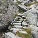 Spur des einstigen Weges von Cortitti zur oberen und namenlosen Alp