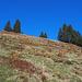 Schöne Herbstfarben auf der Bösarni-Alp