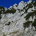 in der Vergrößerung kann man etwas unterhalb der Mitte einen Wanderer mit blauen Rucksack sehen, der mir später im Anstieg zur Jovenspitze entgegen kommt.
