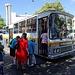 Die Wanderung beginnt mit dem ersten Abenteuer: Busfahrt ab Funchal