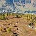 Prächtige Farben im Abstieg zum Büelenberg