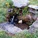 Le baite a Tic Cattaneo, dove è possile prendere acqua