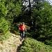 Bellissimo sentiero alto da Predelp a Brusada. Sentiero invernale per ciaspole (paline viola)