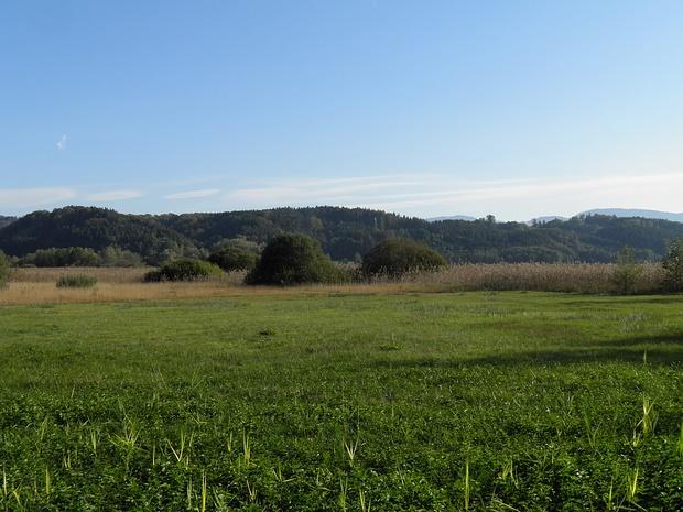 harmonische Landschaft in Seenähe