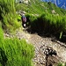Weggabelung direkt unterhalb des Gipfels. Von rechts kommt der Weg vom Boca do Cerro hoch, nach links führt er zum Encumeada-Höhenweg.