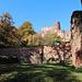 Burgruine Hardenburg von Süden