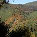 Versteckt im Wald der Nonnenfels, ein Felsen mit historischem Hintergrund