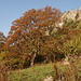 Culmine San Pietro_Artavaggio: Sentiero Basso Invernale