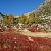 Alpe Devero: Alpe Valdeserta