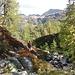 Alpe Devero: discesa Lago Devero