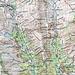Schaut Euch diesen Grat an! Schon auf der Karte sieht der unglaublich sexy aus: Aus den Ü-3000-Regionen am Alpenhauptkamm kommend, zieht der Dorferkamm hinunter zum wanderbewegten Türmljoch, und von dort aus in nahezu schnurgerader Linie hinunter ins Virgental. Eine grandiose Linie, die geradezu darum fleht, begangen zu werden.