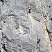 meine Zoom Kamera gab mir recht, es übten sich zwei bis drei Bergsteiger an der Schafbergwand