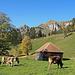 Wanderung mit schönsten Aussichten, Lütispitz und Schafwisspitz