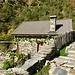 Dieses Rustico wurde in den letzten Jahren renoviert. Es liegt am Eingang ins Val Camana. Hier hingen noch reife Trauben an der jungen Rebe. Ich habe mich freimütig bedient.