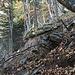 All'inizio del vecchio sentiero (per chi sale) si incontrano i resti in primo piano e poi si traversa sopra il salto di roccia in secondo piano