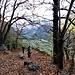 Nel bosco sotto Pontei di Fuori.