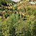 Da Canè si vede tutta la verticalità della Val Malvaglia.