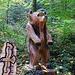 Bärenstark... obwohl dieser wohl schon halb im WInterschlaf ist :-)