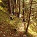 hier ist mein Einstieg in den Canyon, oben links an dem Baum liegt ein kleiner Steinmann