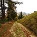 Weg zur Bergwirtschaft Malsenberg