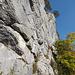 Sicht in den Klettergarten Brückenwand/-wald.