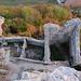 Blick in den unteren Teil der Ruine.