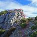 die rote Linie ist mein Aufstieg, ganz nah an der Gratkante geht es hinauf, hier sollte man sich keinen Fehler erlauben, in der Pfeilrichtung, 30 cm neben dem Aufstieg geht es 50 m senkrecht eine Felswand hinunter. Die blaue Linie als Wegführung habe ich nachträglich im Bericht von Hikr Alpstein gesehen. siehe: [http://www.hikr.org/gallery/photo1084538.html?post_id=64349#1 Alpstein]