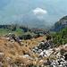 Blick von der Stauberenkanzel ins Rheintal hinunter
