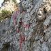 """die rote Linie ist in etwa der Lauf meiner Schuhe und die beiden roten Punkte oben im Felsen waren für mich wichtige Haltepunkt im Felsen, wo ich mich hochgezogen habe. Rot eingerahmt sind sie Stahlbolzen die sehr hilfreich sind, das Stahlseil unten und die rote """"Schnur"""" oben kann man vergessen, die schaden mehr als sie nützen."""