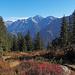 Urner Bergherbstszenerie mit dem Oberalpstock im Hintergrund