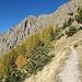 Solange man auf dem Hüttenweg bleibt,  ist  der Weg komfortabel. Auch im steilen Abschnitt des Hangs.