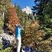 Ausschau nach rufendem Piepmatz im Herbstwald auf dem Sitzsteinweg. Hinten der Zuestoll