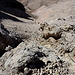"""Im Abstieg von der Vetta Orientale - Gleich geht's wieder über eine vermeintliche """"Schlüsselstelle"""": Wir nähern uns an eine quasi senkrechte Felsstufe an, die klettersteigmäßig gesichert ist..."""