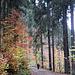 Hiking near Daun in fall