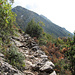 The trail follows (for a part) an old mule path