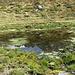 Pozza d'acqua nei pressi di Cassina di Lago.