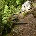 Der alte Kuhweg von Gallina nach Sciresa di sopra