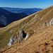 Steil bergab in die Rossfelder