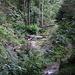 Along the Ghaster stream