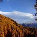 Wunderschöne Herbststimmung!