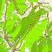 <b>Tracciato GPS Dosso d'Arla.</b>