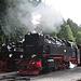 Steam engines at Schierke station