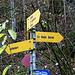 hinauf nach La Haute Borne durch die Combe du Vivier