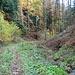 Wanderweg entlang des Ruisseau de Mettembert