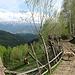 View towards the Bucegi Range