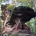 Zigeunerfels / Rocher des Tziganes. Je ne savais pas qu'ils aimaient grimper.