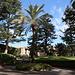 Unterwegs in den Vatikanischen Gärten (Giardini Vaticani) - Blick von der Casina di Pio IV durch das parkähnliche Gelände. Hinten ist die Pinakothek zu erahnen.