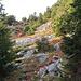 noch ein Rückblick beim Abstieg, beim Aufstieg ist hier der Weg nicht gut ersichtlich, hier geht es über das steinige Feld hinüber und nachher nach rechts hinauf.