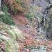 Sentiero Auliga-Spighi